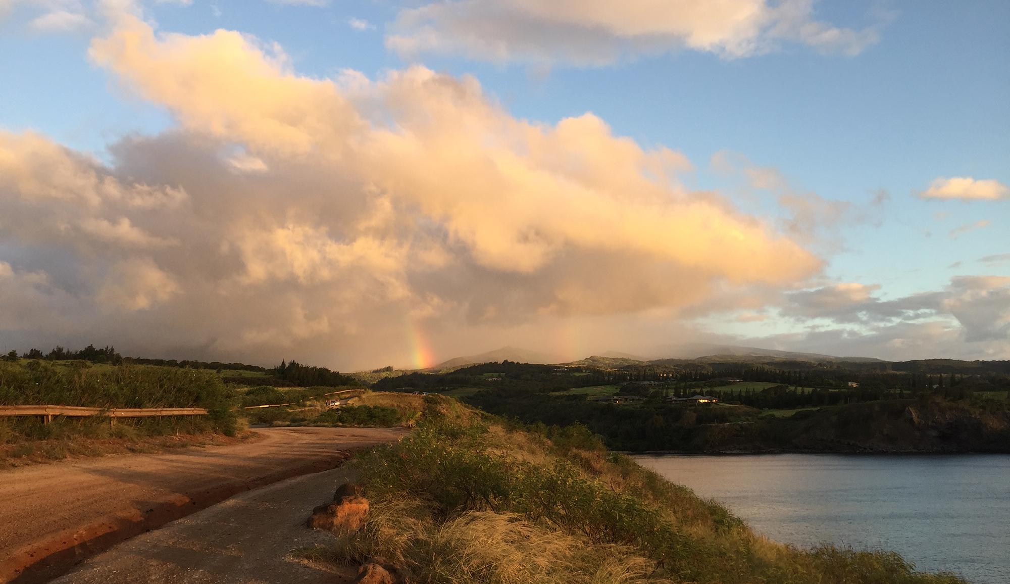 Lipoa Point Rainbow