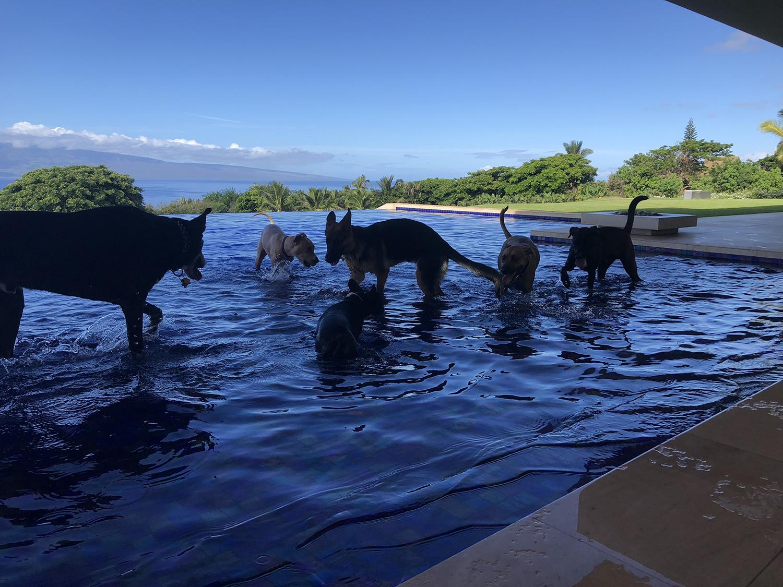 Launiupoko Pool Playdate