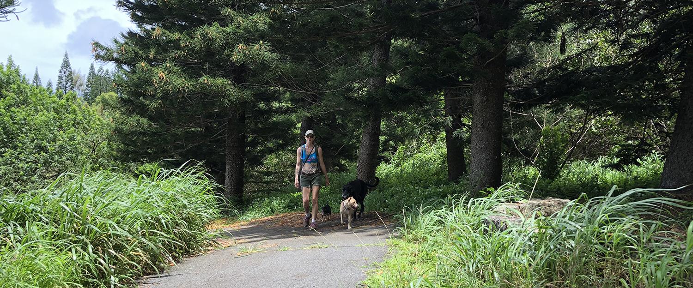 Summer Pawlooza March hikes